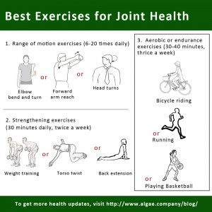 Best Exercises for Joint Health